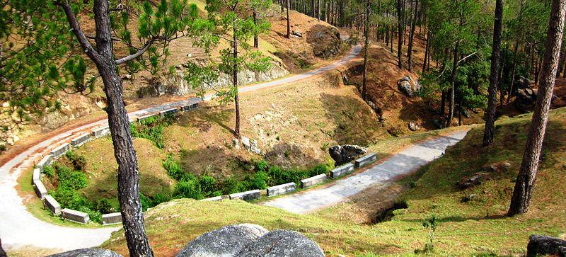 Sarna_Garden_road,_Ranikhet